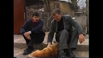 Лисица с чадър... Смях с Венци Мартинов и Пепо Габровски