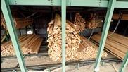 Автоматична дървообработка - Компилация невероятни машини