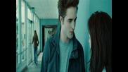 Edward Cullen - Irresistible