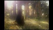 Песента която разбива влюбените по (seka Aleksic - poslednji let official video 2009)