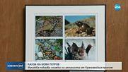 Изложба показва снимки на Боян Петров от Кресненския пролом