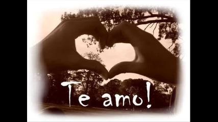 *.* Te Amo *.*