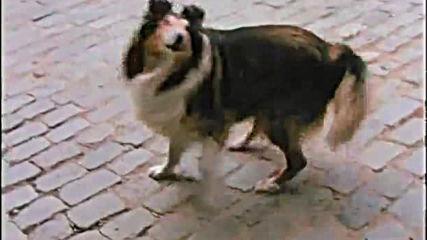 Патилата на Спас и Нели (1987) (част 1) Dvd Rip Аудиовидео Орфей 2006