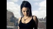 Evanescence - Imaginary , prevod