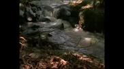 National Geographic - Serpientes De Africa