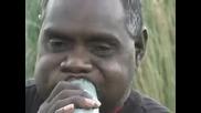 диджеридо - музиката на австралийските аборигени