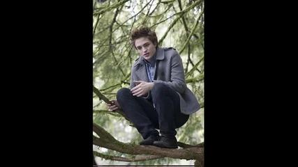 Edward Cullen [h]