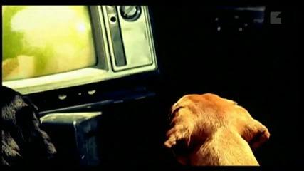 Korn- World Up! * Високо Качество * + Subs ..