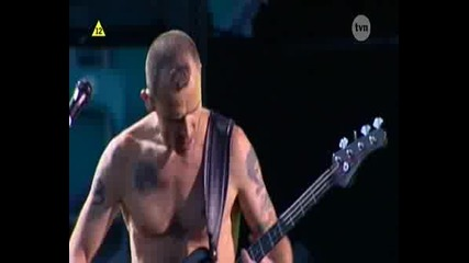 Red Hot Chili Peppers - Scar Tissue Live