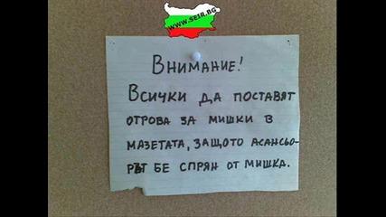 Bulgarian лудницааа!!!