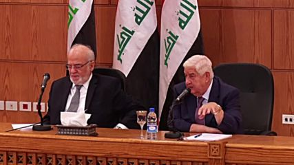 Syria: 'Full victory' once govt. reclaims Idlib, n. Aleppo and Euphrates - FM Muallem