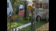 10 начина,  как да не косим тревата в градината