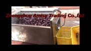 Purple Potato Cleaning and Peeling Machine, Vegetable Peeler, Vegetable Washer