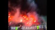 Левски - Цска *27.03.2010* - Това е вашият жалък черен животец. Единственият светъл лъч сме ние !!!