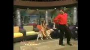 Това куче танцува по - добре от теб :)