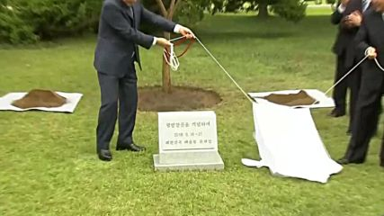 North Korea: Tree planted to mark S Korean president's visit