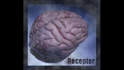 Receptor & Bes - Shiva