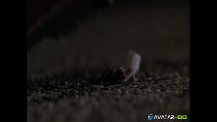 Nothing to Lose - Имаш паяк на главата!!!