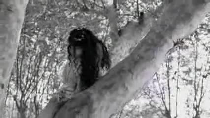 Evanescence - My Immortal превод