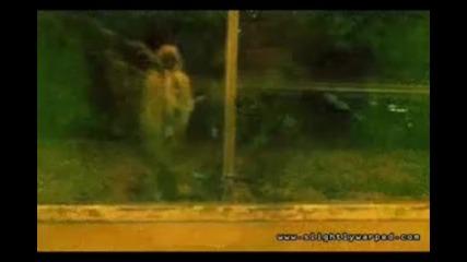 Кой каза,  че призраците не съществуват