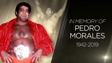 Tributo al miembro del Salón de la Fama WWE Pedro Morales
