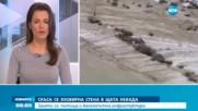 Заради скъсана язовирна стена: Огромни наводнения в Невада