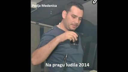 !!! Pedja Medenica 2014 - Na pragu ludila - Prevod