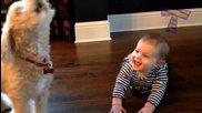 Кучета и бебета си говорят - Забавна компилация