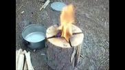 Как да си направите котлон в гората с подръчни материали за няколко секунди!