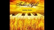 Стефан Колев - Fields Of Gold (акустичен кавър)