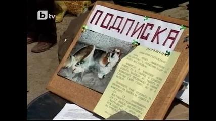 Проблемите с нападения от кучета