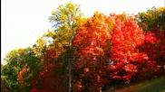 Есенно...
