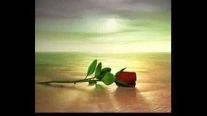 Ти Си Всичко В Моя Живот...обичам Те... Vbox7