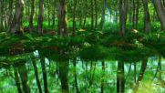 Celtic Music - Fairy Woods _ Beautiful Fantasy Soundtrack