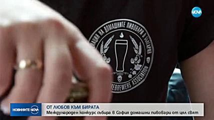 Любителите на пивото от цял свят мерят качествата на домашната си бира