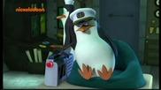 Пингвините От Мадагаскар Бг Аудио 02.03.2014 Цял Епизод