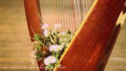 Celtic Treasure 1 Hour Sleep Music of Ireland Celtic Harp Soundscapes