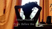 Ethan Meixsell - Pride Before the Fall