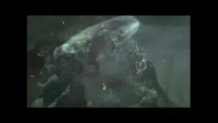 Diablo 3 - Trailer
