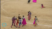 Bullfighting Under Threat From Spain's New Left-Wing Councils