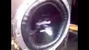 Bleg Bass