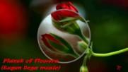 Планета от цветя ... ( Eugen Doga music) ...
