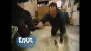 Сладурът Knut