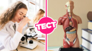 ТЕСТ: Можеш ли да се справиш с този базов тест по биология за прогимназисти?