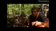 Man vs. Wild - Bloody Trail