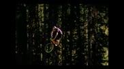 Mountain Bike (nwd 10)