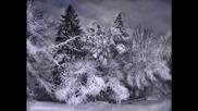 Коледна магия
