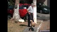 Ходиш си по улицата и изведнъж виждаш човешка глава! Гледайте какво стана след това!
