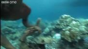 Izkliuchitelni deca ot plemeto Moken vijdat iasno pod vodata