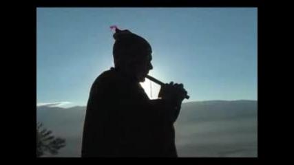 Peruanska Muzika